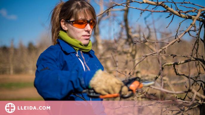 Les dones representen el 40% de les persones que treballen al sector agroalimentari