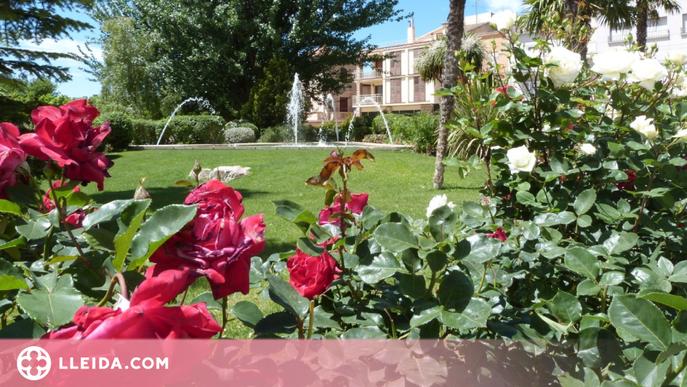 Les Borges anima a engalanar balcons amb plantes i flors naturals