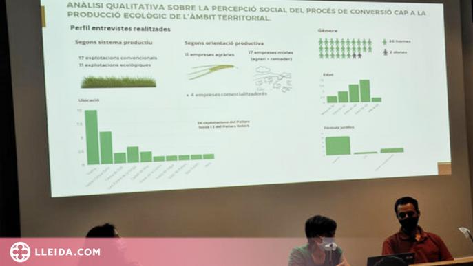 ⏯️ Un de cada tres agricultors del Pallars Jussà ja fa producció de cereal ecològic
