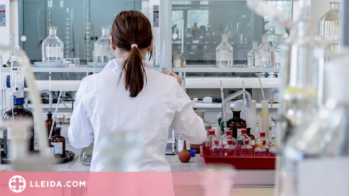 Estudi pioner per avaluar l'eficàcia de la immunoteràpia en 29 tipus de càncer
