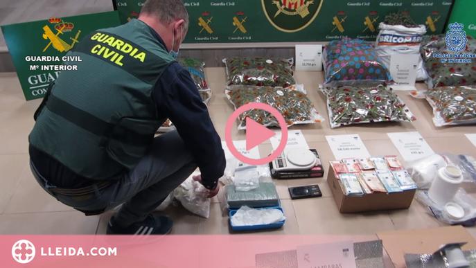 ⏯️ Cau un grup de tràfic de drogues que operava a Lleida, Barcelona, Alacant i Almeria