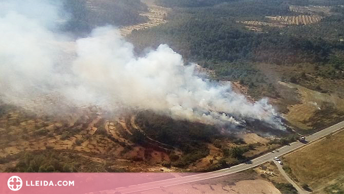 Un incendi crema un camp de blat a les Garrigues