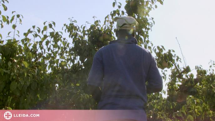 L'àmbit laboral, segona causa del tràfic de persones a l'estat espanyol