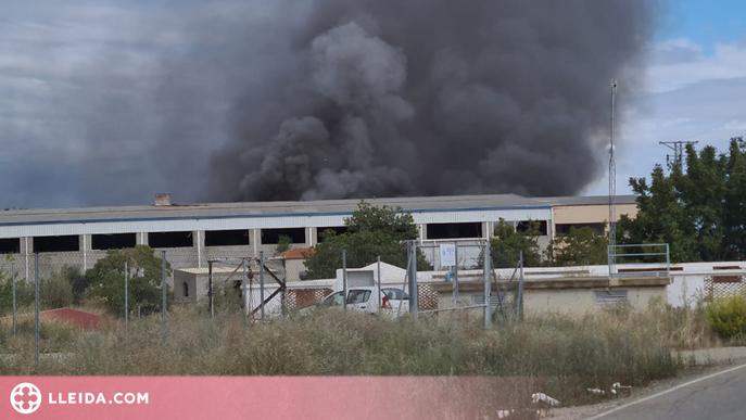 Un incendi crema una nau a Torrefarrera