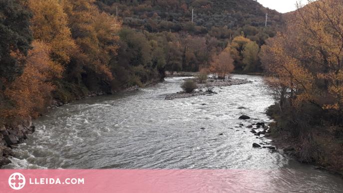 Investigació lleidatana per reduir els efectes de les hidroelèctriques sobre els rius de muntanya