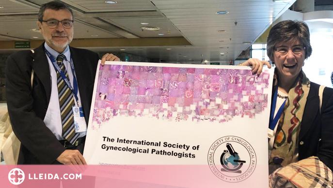 Xavier Matias-Guiu, nou president de la Societat Internacional de Patòlegs Ginecològics