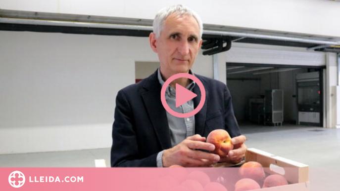 """⏯️ Josep Usall (IRTA): """"No es pot fer producció agrària que no sigui en l'àmbit de la sostenibilitat"""""""