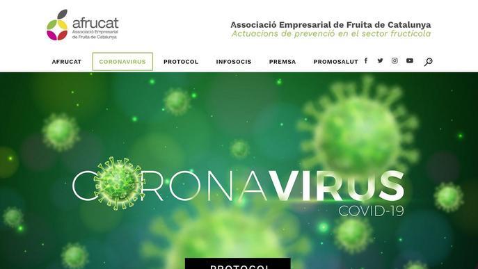 Afrucat desenvolupa el primer protocol de prevenció contra el coronavirus per a centrals fruiteres validat per Salut