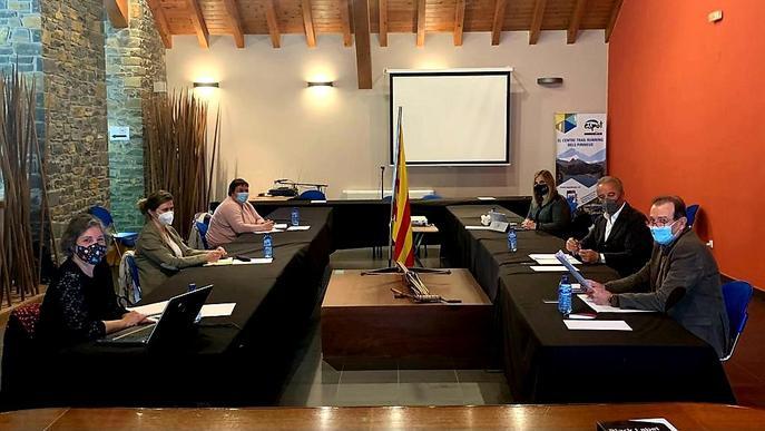Front comú dels Consells del Pirineu i l'Aran per demanar més comunicació amb el Govern