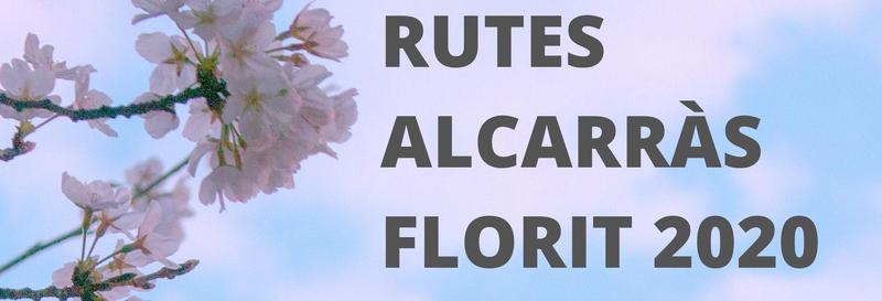 Racons amb encant on gaudir de la floració arreu del territori