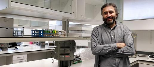 Estudien el càncer colorectal 'manipulant' una mosca