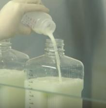 Lleida, demarcació més solidària en donació de llet materna