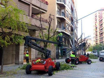 Esporga selectiva d'arbres a Lleida per aconseguir optimitzar la il·luminació dels carrers i places