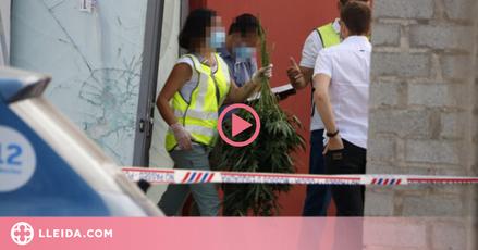 ⏯️ Presó provisional per a tres detinguts en l'operació antidroga de Torrefarrera