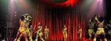 "Sorteig 10 entrades dobles per l'estrena de ""Bellissimo"" de Il Circo Italiano"