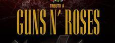 Black Ice Best AC/DC Show + Hell House Guns N' Roses